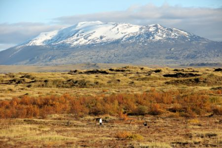 Mt. Hekla, man and dog in nature